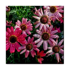 Pink Asters Tile Coasters