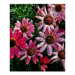 Pink Asters Shower Curtain 60  X 72  (medium)
