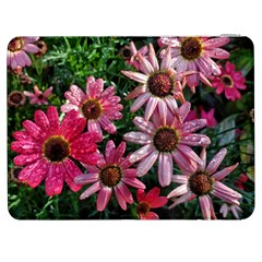 Pink Asters Samsung Galaxy Tab 7  P1000 Flip Case