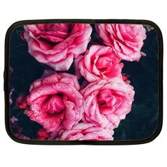 Pink Roses Ii Netbook Case (large)