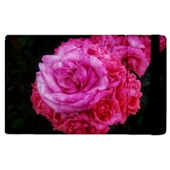 Bunches Of Roses (close Up) Apple Ipad 3/4 Flip Case