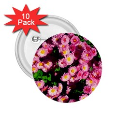 Pink Flower Bushes 2 25  Buttons (10 Pack)