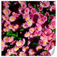 Pink Flower Bushes Canvas 12  X 12