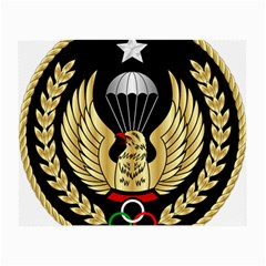 Iranian Army Freefall Parachutist Master 3rd Class Badge Small Glasses Cloth (2-side) by abbeyz71