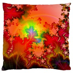 Background Abstract Color Form Large Flano Cushion Case (one Side)