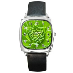 Wurz Houseleek Turmeric Plant Square Metal Watch