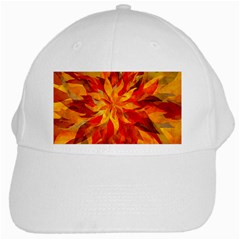 Flower Blossom Red Orange Abstract White Cap