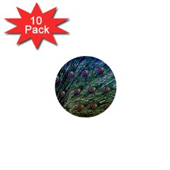 Peacock Feathers Colorful Feather 1  Mini Buttons (10 Pack)