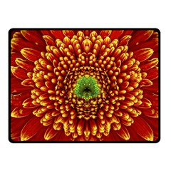 Flower Dahlia Red Petals Color Double Sided Fleece Blanket (small)