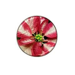 Christmas Poinsettia Deco Jewellery Hat Clip Ball Marker (4 Pack)