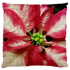 Christmas Poinsettia Deco Jewellery Large Flano Cushion Case (two Sides) by Pakrebo