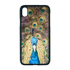 Bird Peacock Feather Iphone Xr Seamless Case (black)