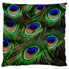 Peacock Feathers Plumage Iridescent Standard Flano Cushion Case (one Side)
