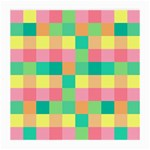 Checkerboard Pastel Squares Medium Glasses Cloth Front