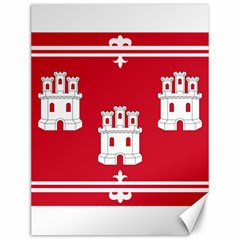 Flag Of Aberdeen Canvas 12  X 16  by abbeyz71