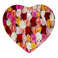 Roses Color Beautiful Flowers Ornament (heart) by BangZart