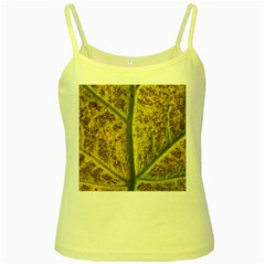 Leaf Structure Texture Background Yellow Spaghetti Tank by Pakrebo