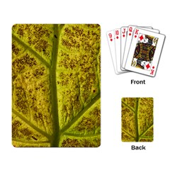 Leaf Structure Texture Background Playing Cards Single Design (rectangle)