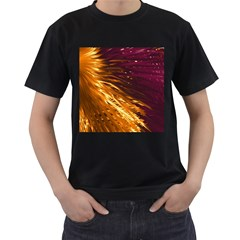 Lines Curlicue Fantasy Colorful Men s T Shirt (black)