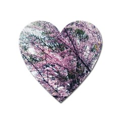 Ohio Redbud Heart Magnet by Riverwoman