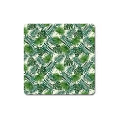 Leaves Tropical Wallpaper Foliage Square Magnet