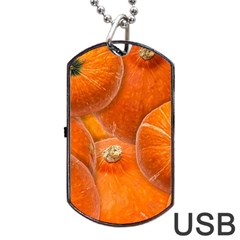 Pumpkin Halloween Fall Thanksgiving Dog Tag Usb Flash (one Side)