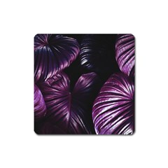 Purple Leaves Square Magnet