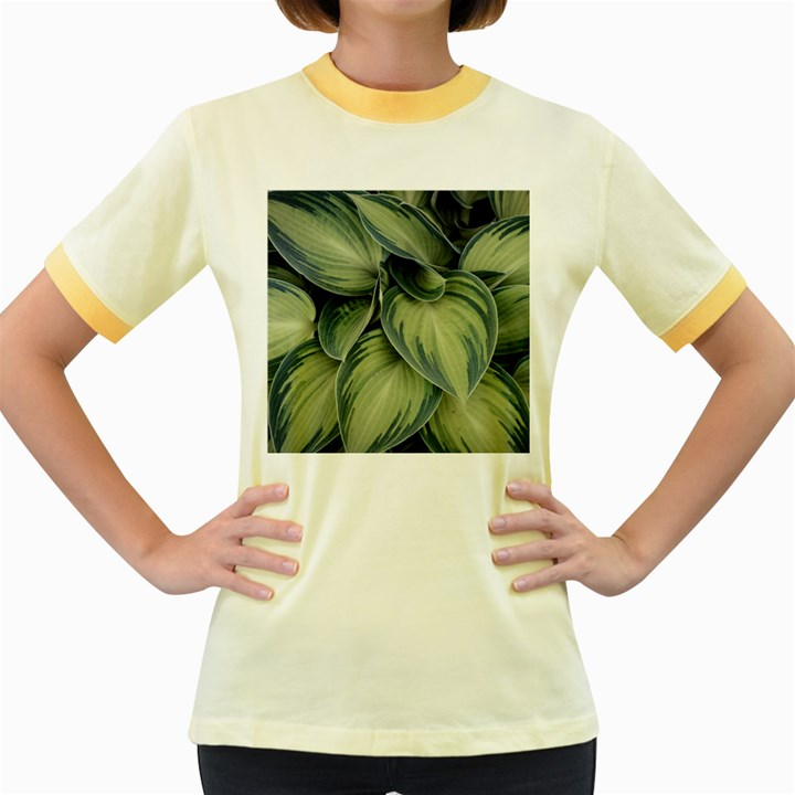 Closeup Photo Of Green Variegated Leaf Plants Women s Fitted Ringer T-Shirt