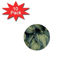 Closeup Photo Of Green Variegated Leaf Plants 1  Mini Buttons (10 Pack)  by Pakrebo