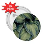 Closeup Photo Of Green Variegated Leaf Plants 2.25  Buttons (10 pack)  Front
