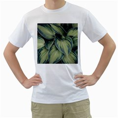 Closeup Photo Of Green Variegated Leaf Plants Men s T Shirt (white) (two Sided)