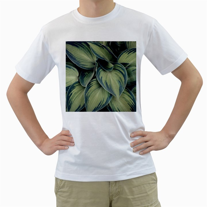 Closeup Photo Of Green Variegated Leaf Plants Men s T-Shirt (White) (Two Sided)
