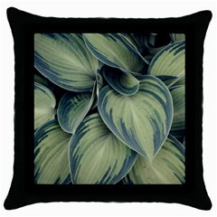 Closeup Photo Of Green Variegated Leaf Plants Throw Pillow Case (black) by Pakrebo