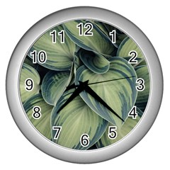 Closeup Photo Of Green Variegated Leaf Plants Wall Clock (silver) by Pakrebo