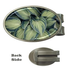 Closeup Photo Of Green Variegated Leaf Plants Money Clips (oval)  by Pakrebo