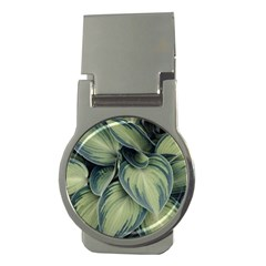 Closeup Photo Of Green Variegated Leaf Plants Money Clips (round)  by Pakrebo