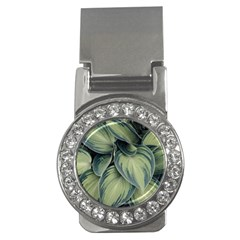 Closeup Photo Of Green Variegated Leaf Plants Money Clips (cz)