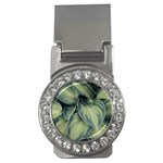 Closeup Photo Of Green Variegated Leaf Plants Money Clips (CZ)  Front
