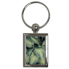 Closeup Photo Of Green Variegated Leaf Plants Key Chain (rectangle)