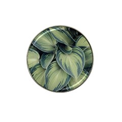 Closeup Photo Of Green Variegated Leaf Plants Hat Clip Ball Marker (4 Pack) by Pakrebo