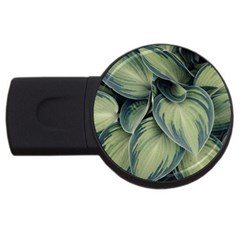 Closeup Photo Of Green Variegated Leaf Plants Usb Flash Drive Round (4 Gb) by Pakrebo