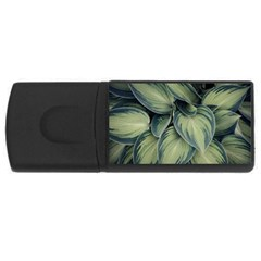 Closeup Photo Of Green Variegated Leaf Plants Rectangular Usb Flash Drive by Pakrebo