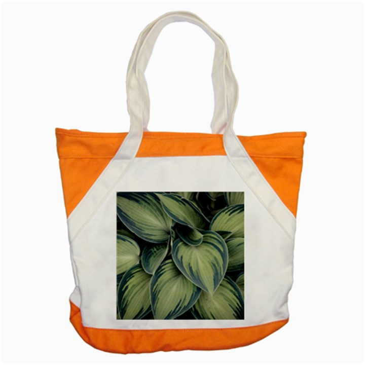 Closeup Photo Of Green Variegated Leaf Plants Accent Tote Bag