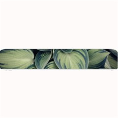 Closeup Photo Of Green Variegated Leaf Plants Small Bar Mats by Pakrebo