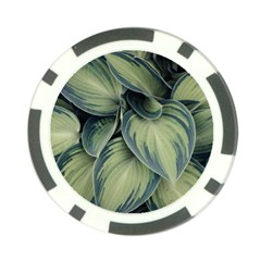 Closeup Photo Of Green Variegated Leaf Plants Poker Chip Card Guard