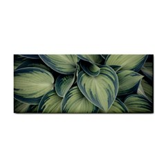 Closeup Photo Of Green Variegated Leaf Plants Hand Towel by Pakrebo