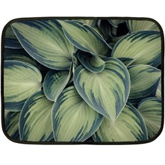 Closeup Photo Of Green Variegated Leaf Plants Fleece Blanket (mini) by Pakrebo