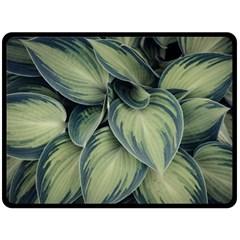 Closeup Photo Of Green Variegated Leaf Plants Fleece Blanket (large)  by Pakrebo