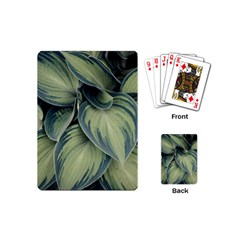 Closeup Photo Of Green Variegated Leaf Plants Playing Cards Single Design (mini) by Pakrebo