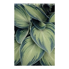 Closeup Photo Of Green Variegated Leaf Plants Shower Curtain 48  X 72  (small)